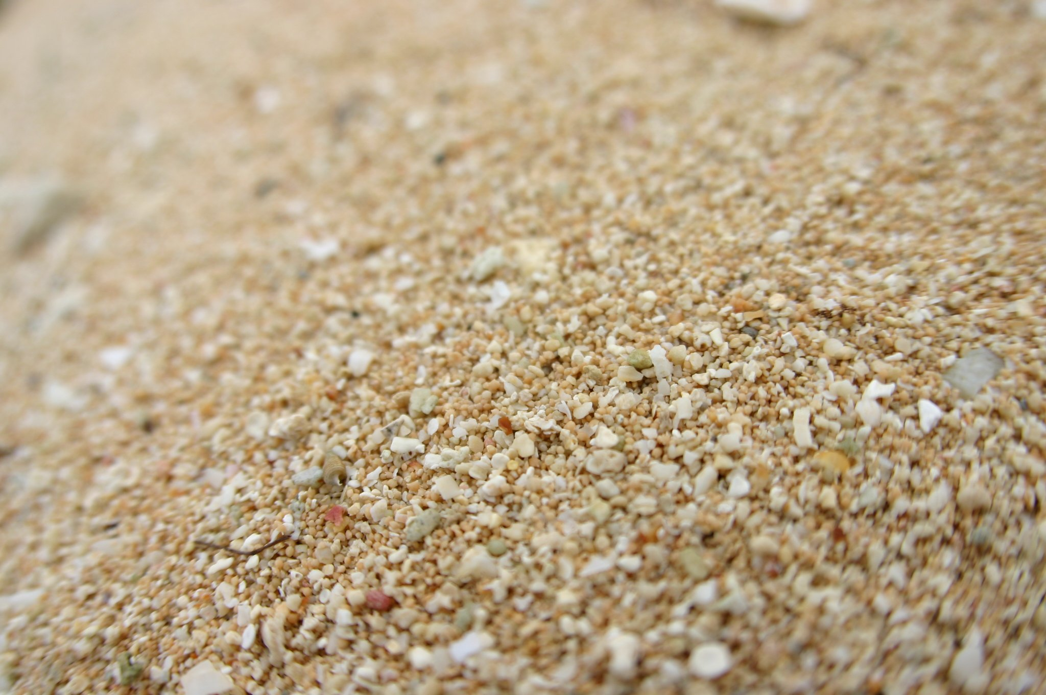ココス島の砂浜