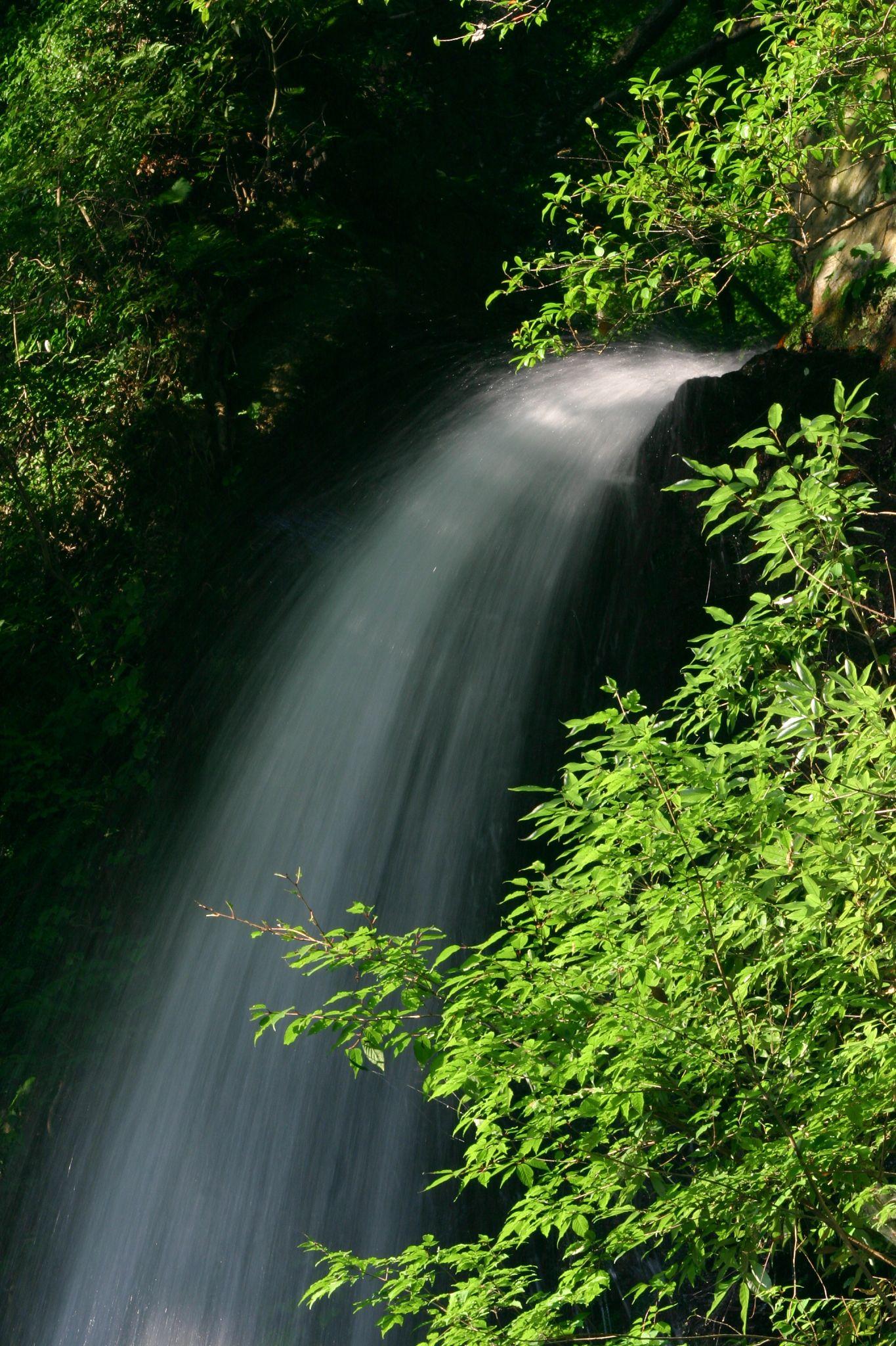 秋にも来たい滝です