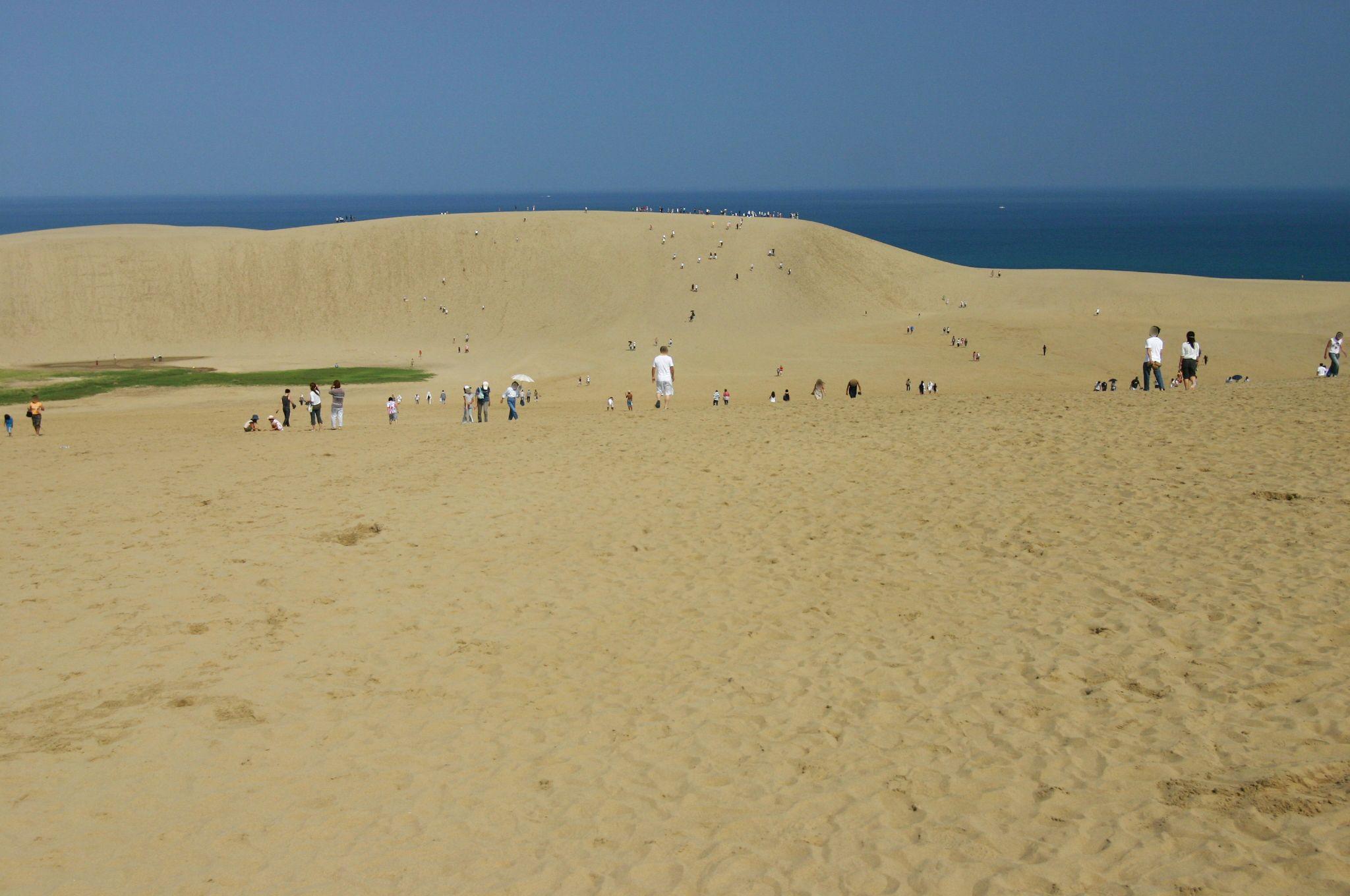 たくさんの人が歩いていた鳥取砂丘
