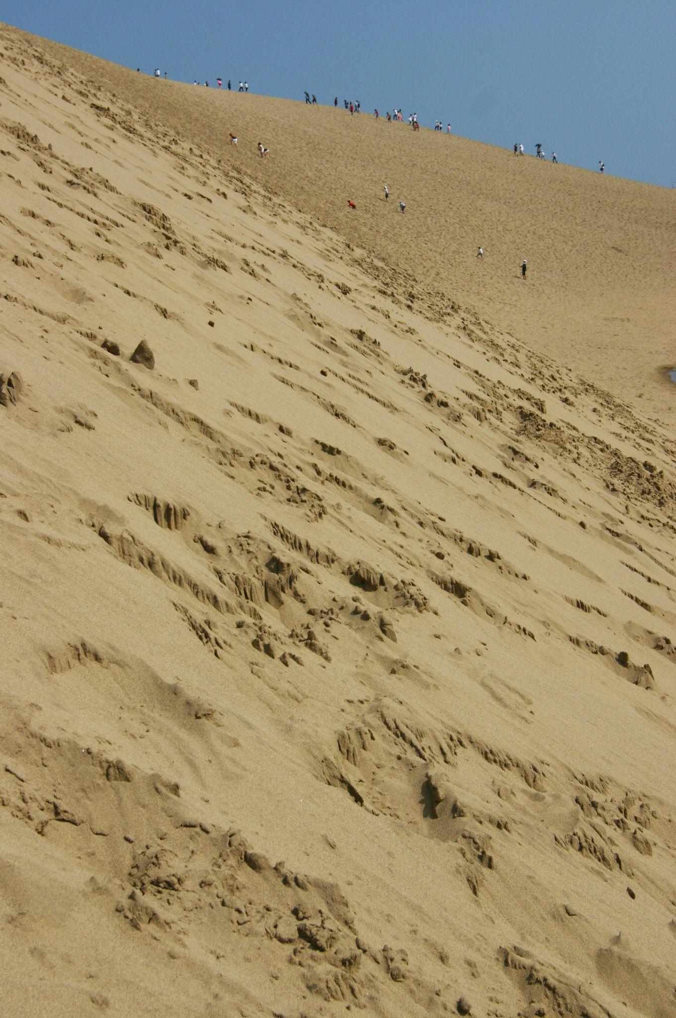 砂丘の大きさと人間の小ささ