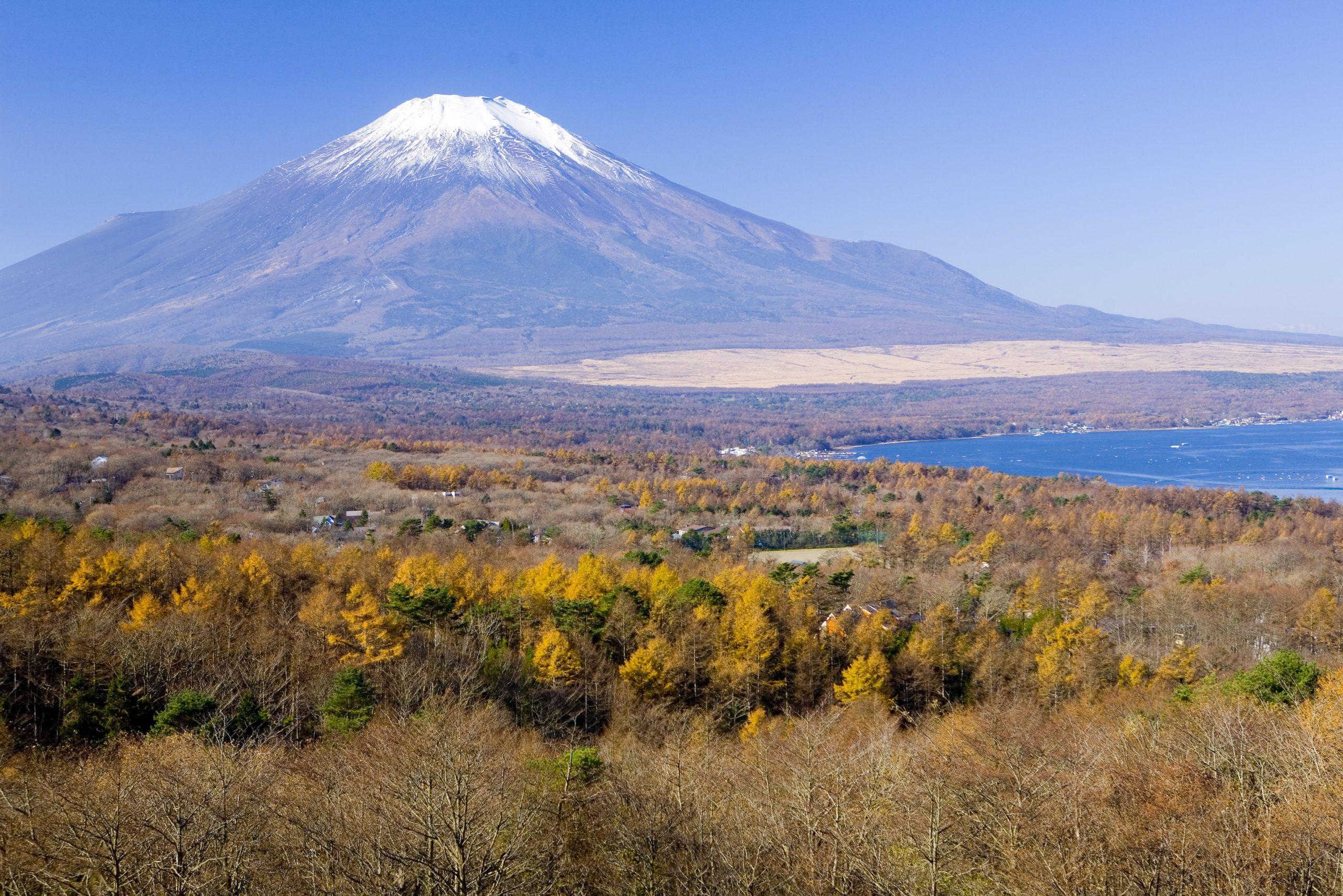 富士山の見えるパノラマ台