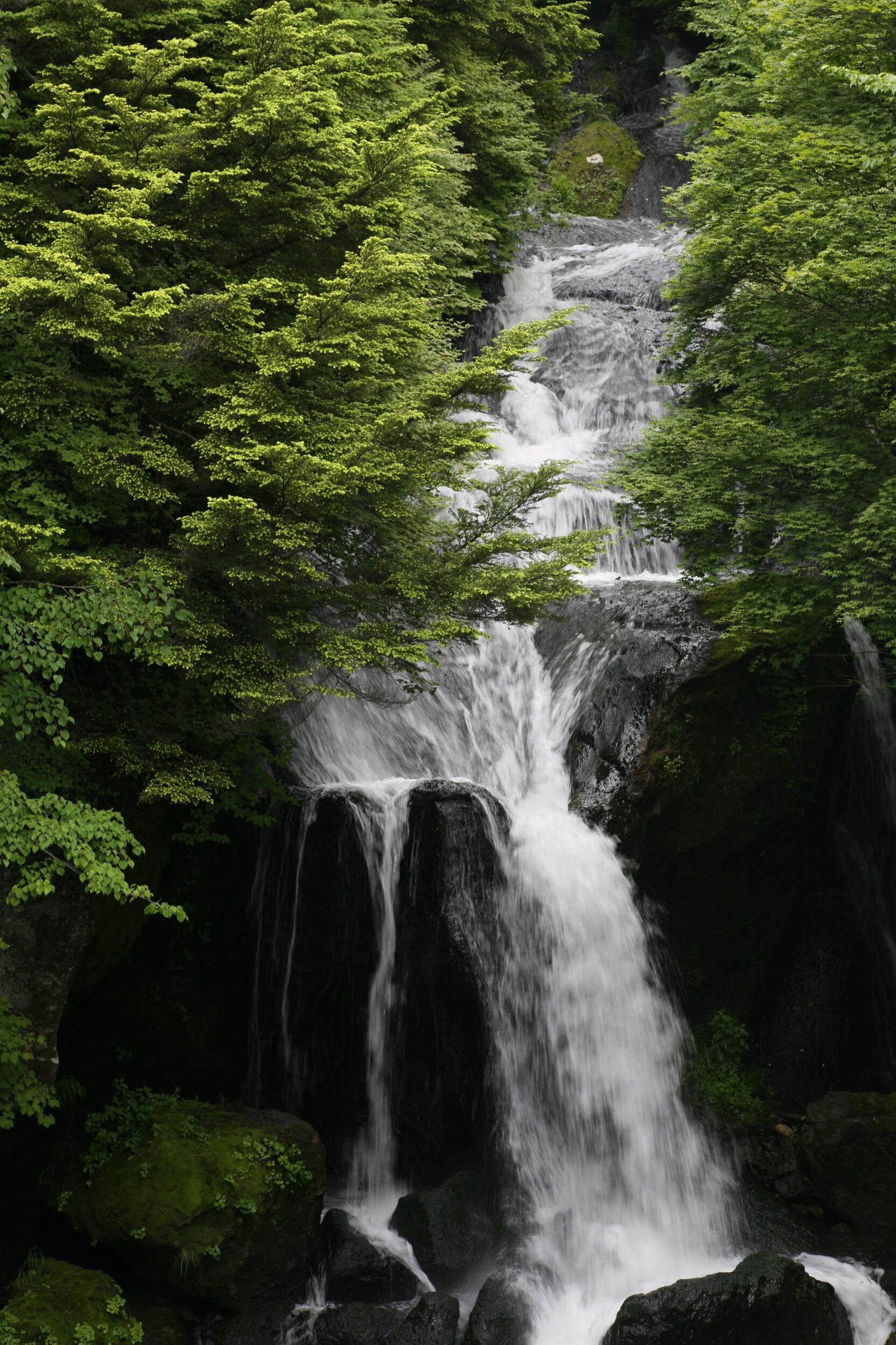 新緑の時期の竜頭の滝