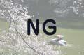 千鳥ヶ淵で桜とボート1