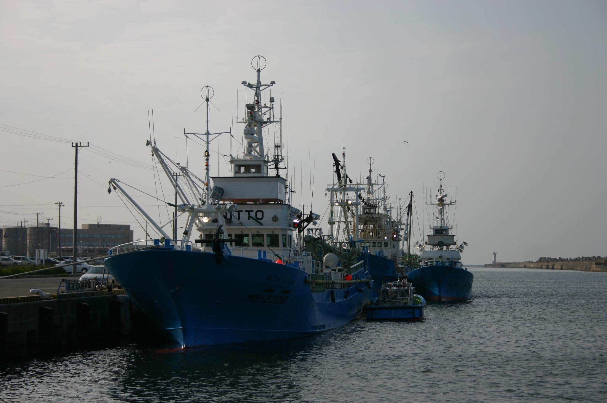 銚子市場付近の漁船