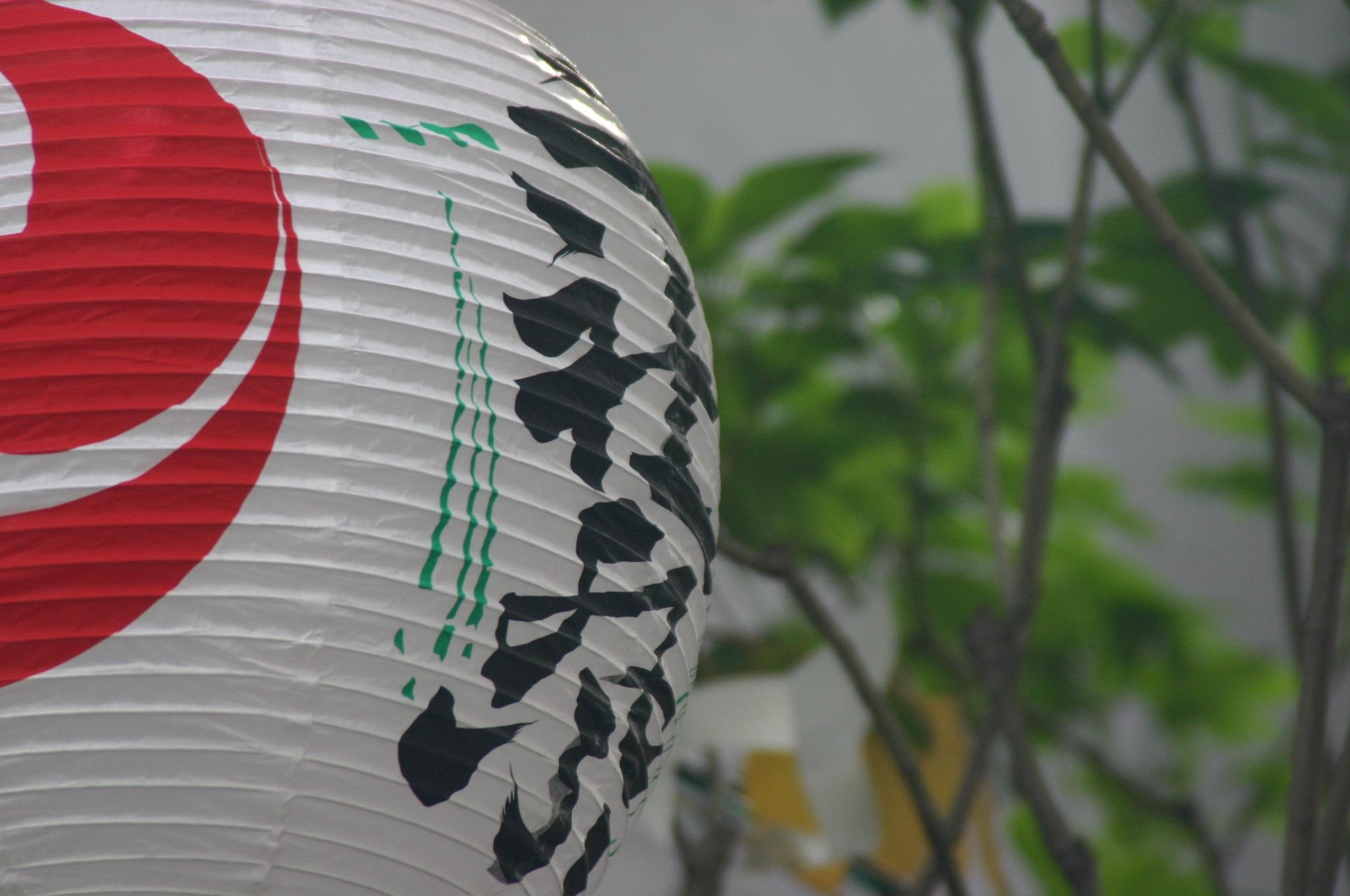 浅草の三社祭の提灯
