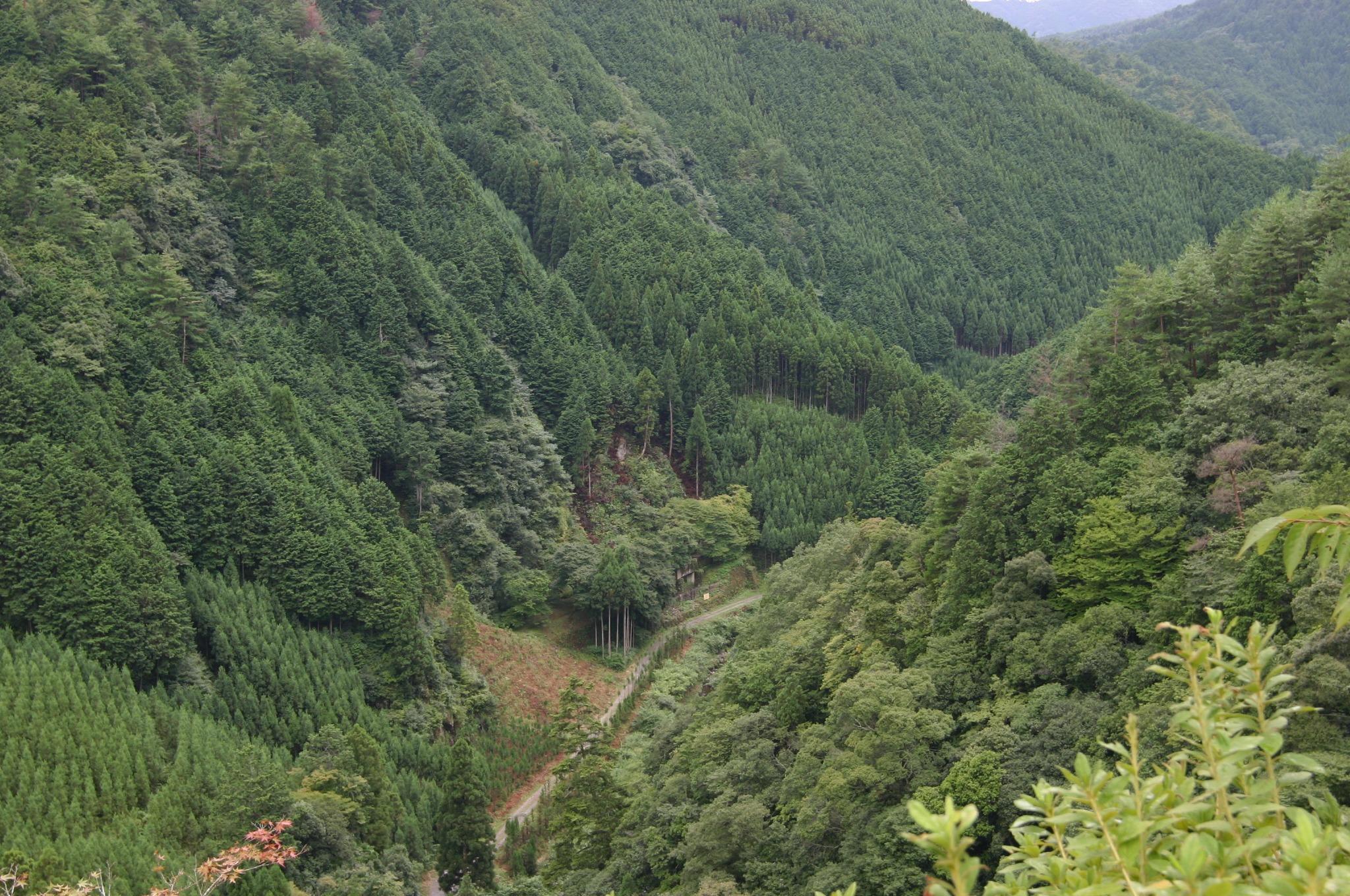 かわら投げで有名な錦雲峡
