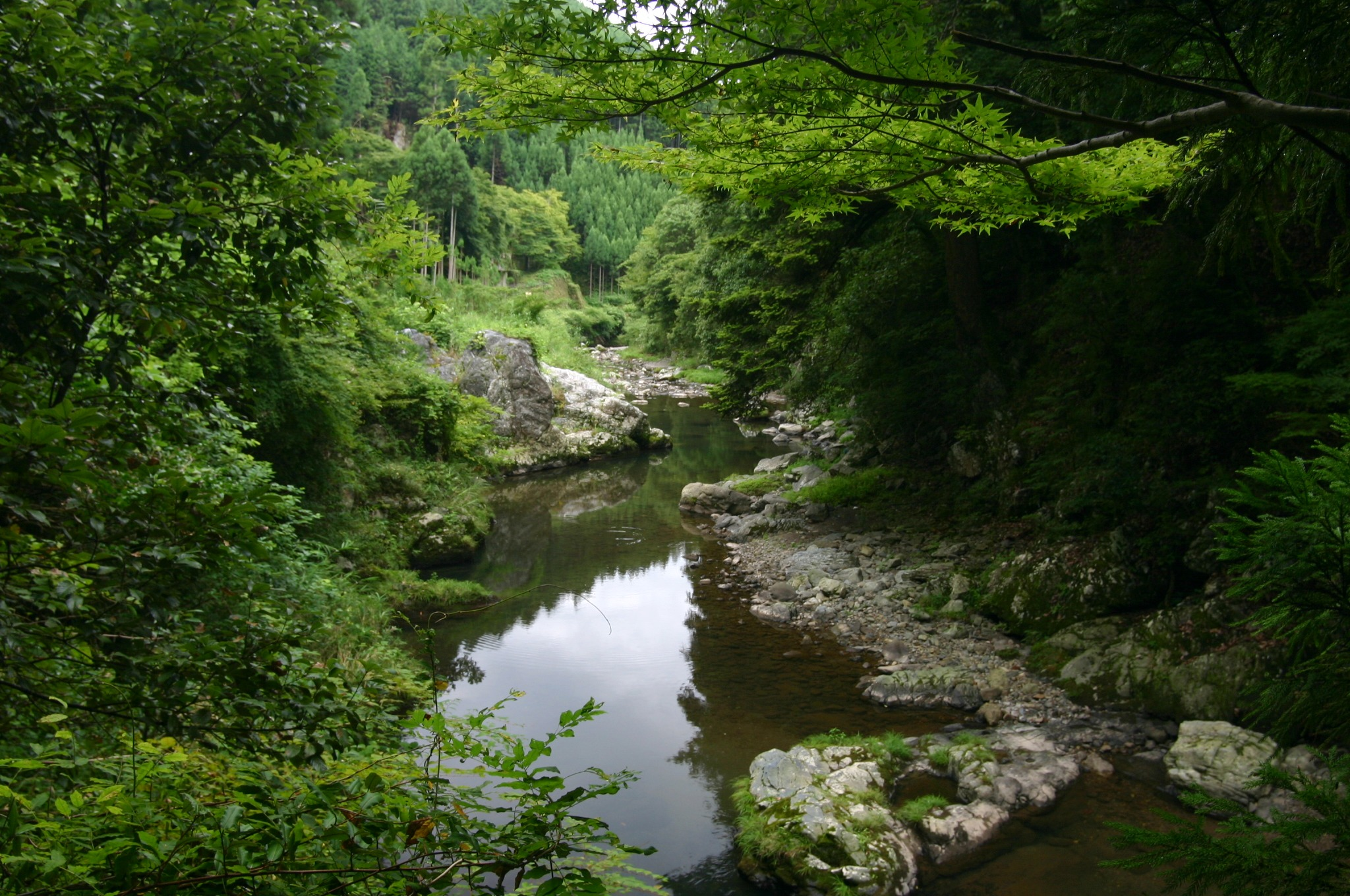 清滝川をさらに奥まで進む