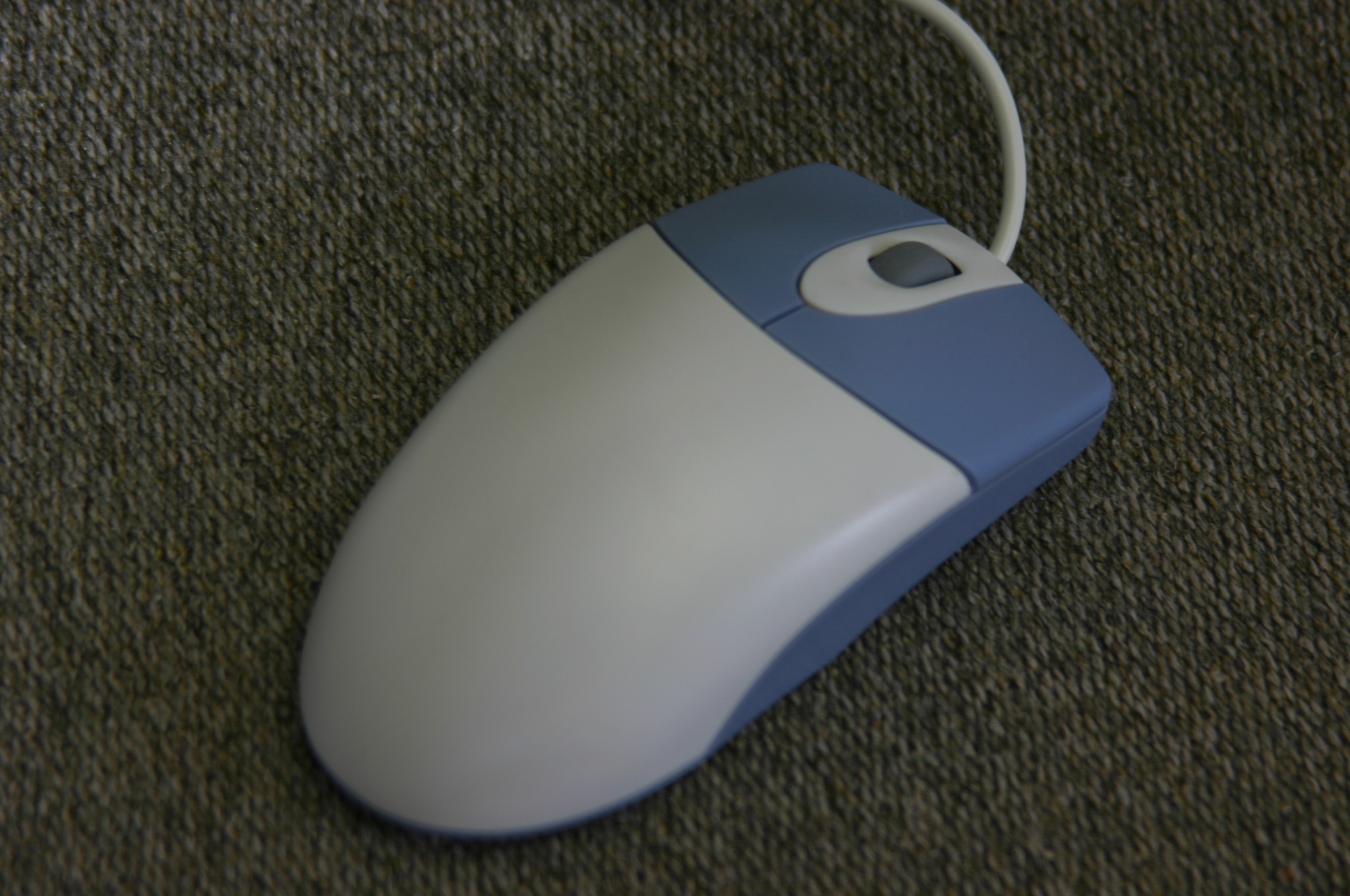 パソコンのマウス(mouse)の写真