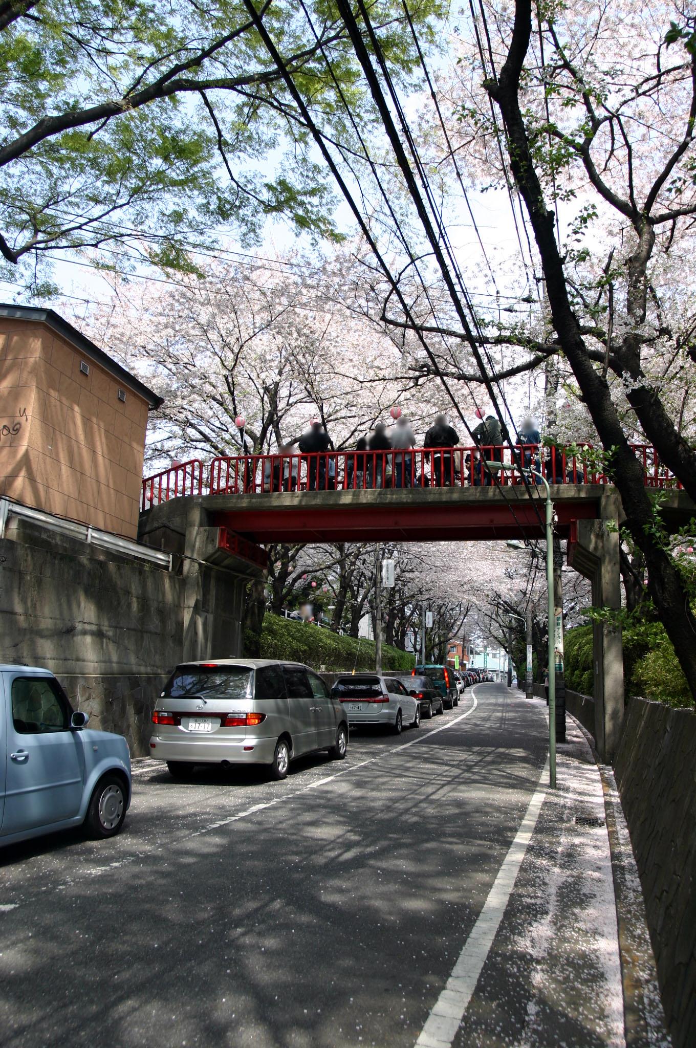 桜坂の歩道橋