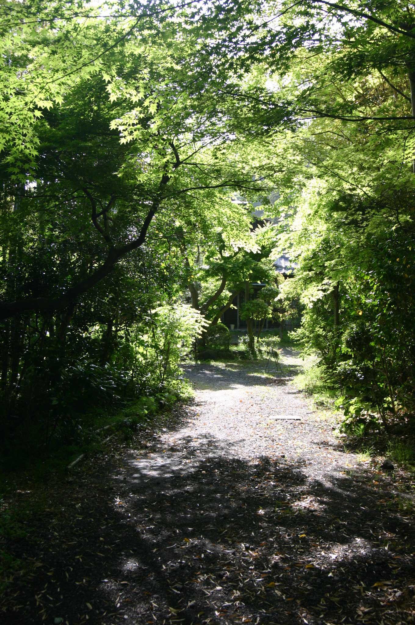 参道がきれいな寿福寺