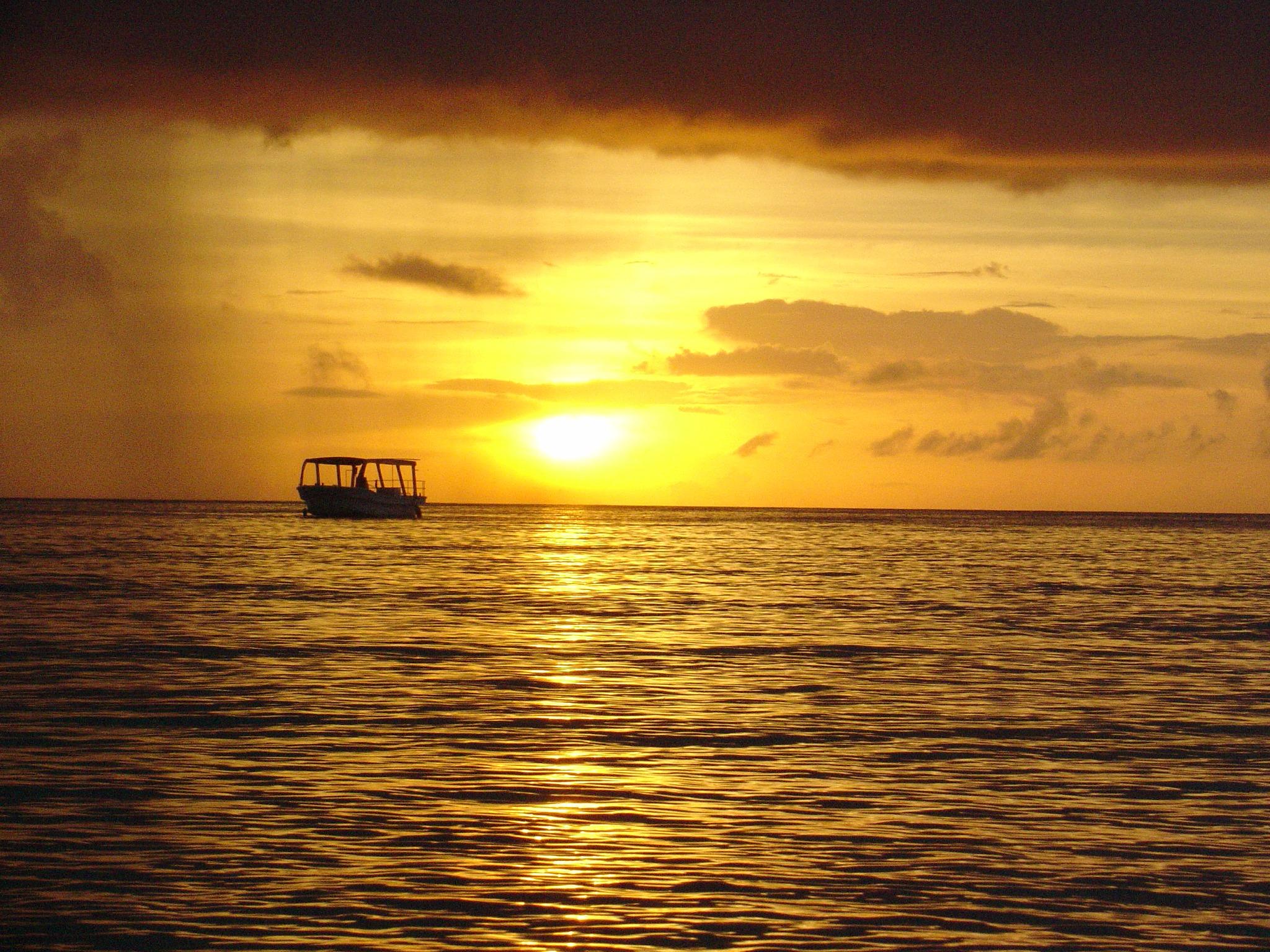 夕焼け時の黄金色の海の写真