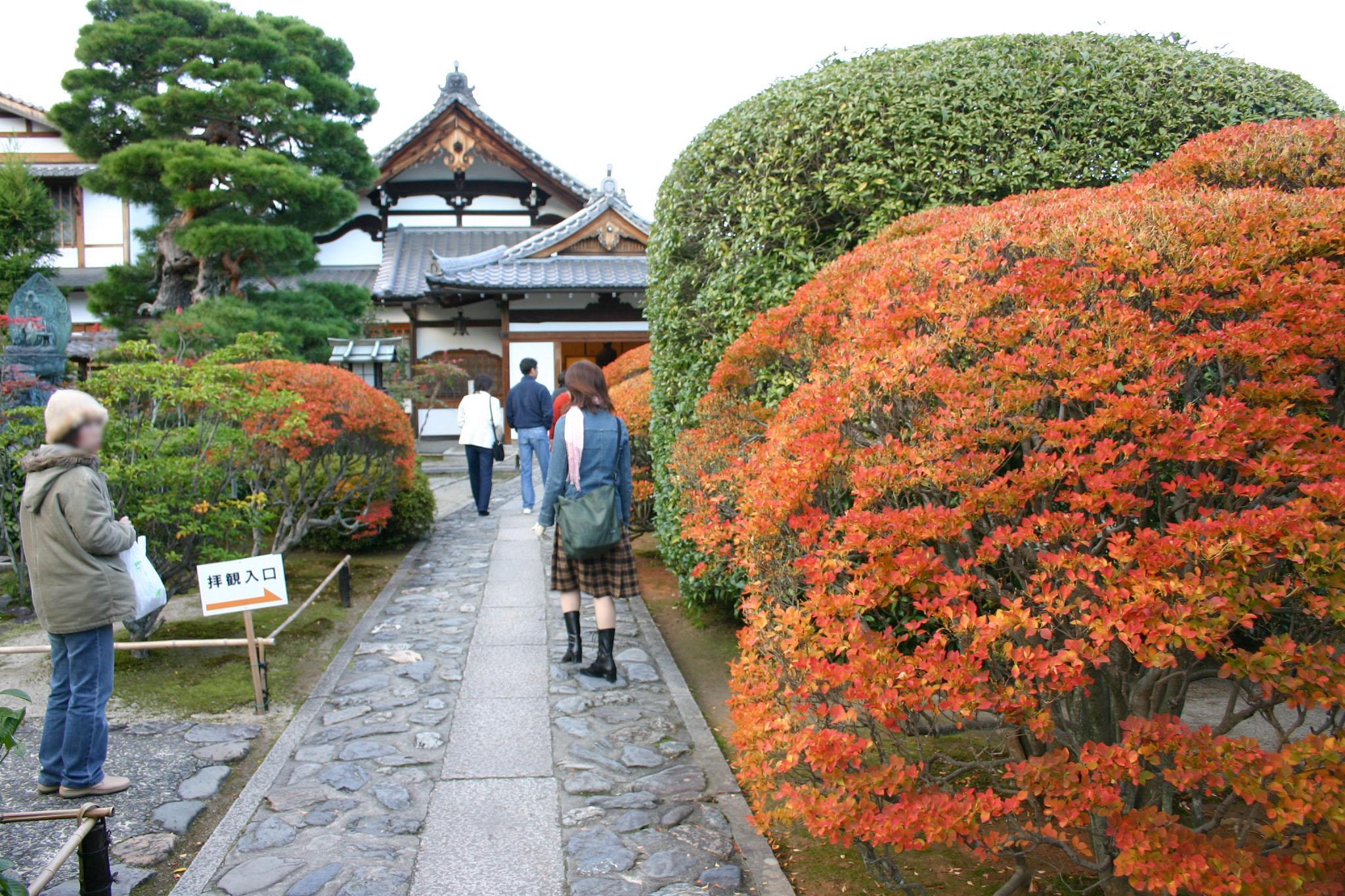 京都の天龍寺にて